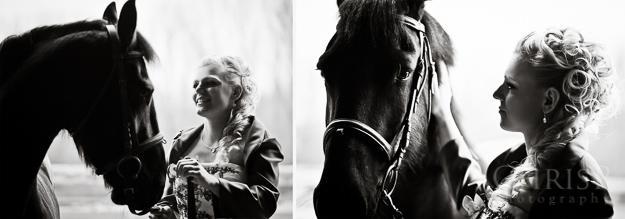 Hochzeitsfotos mit Pferden in Bamberg